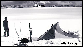 Columbia Icefield, view from tent during backcountry skiing trip.